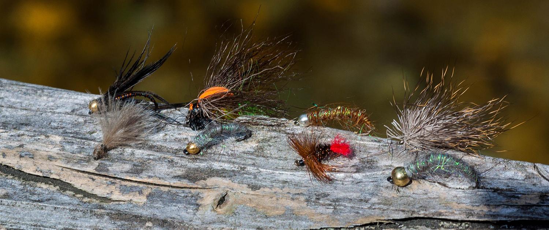 Nympfen- und Fliegensortiment