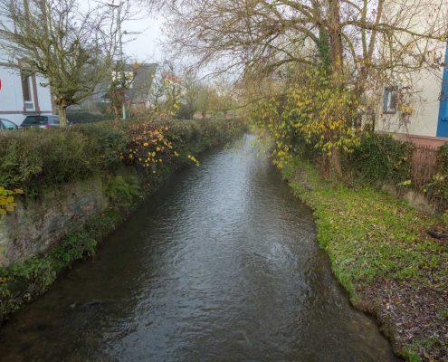 Schwarzbach bei Hofheim